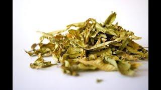 Trzy niezwykłe zioła (tarczyca bajkalska, vilcacora, kava-kava)