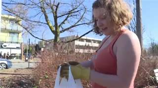 This woman spends spare time picking up other people's litter Video