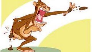 The descent of Man-osphere - Episode 12 - Turd flinging monkey