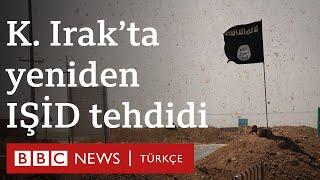 IŞİD, Kuzey Irak'ta 'yeniden örgütleniyor'