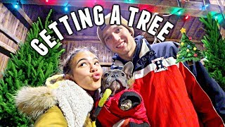 Couples Buy Their First CHRISTMAS TREE!🎄 | Vlogmas Day 3