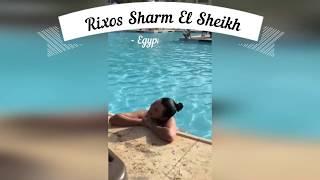 """Шарм эль шейх Rixos """"Горячие Египетские камни""""Девушка интересуется расслабляющим массажем"""