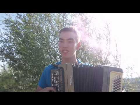 Тима Белорусских - Витаминка( кавер на баяне)