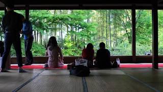 【4K】新緑の京都(2018/5/5)