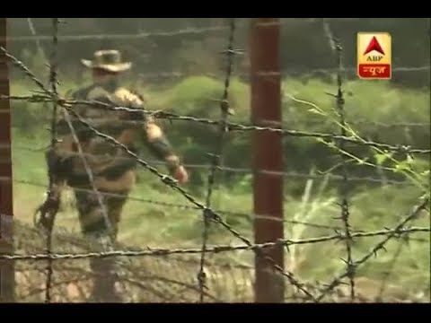 Jammu Kashmir: Pakistan Violates Ceasefire, 4 BSF Personnel Martyred | ABP News