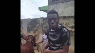 Comedian Akpororo Has Lost it.. Rides Sallah Cow From Lagos - Maiduguri