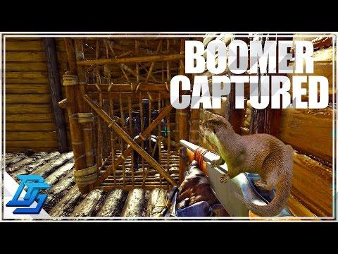Ark:Survival Evolved -Season 11-Part 17- Capturing Boomer! (PvP-Thieves Island)