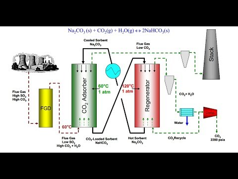 Lec 5 3rd Generation  Microalgae and Terrestrial Plants Nutrients Competition P1