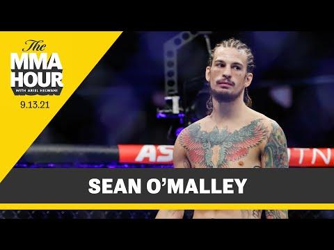 Sean O'Malley: Paddy Pimblett Knows I'm 'Cash Cow' of UFC  - MMA Fighting