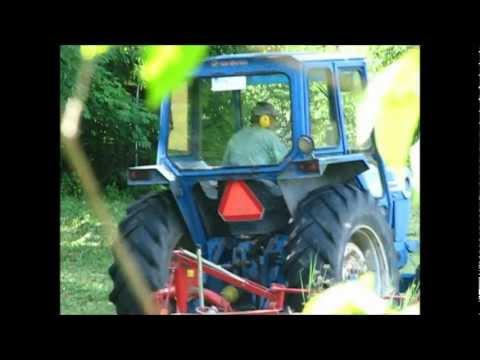 Ford 5600 Cuts grass