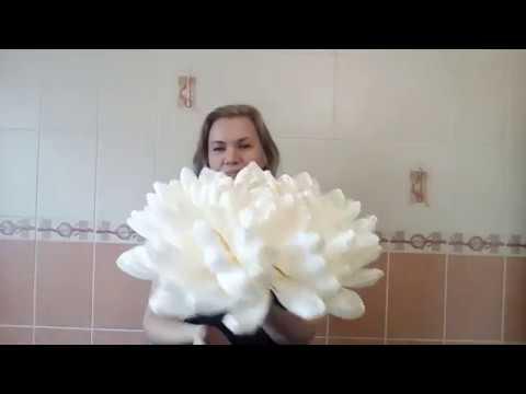БЕСПЛАТНЫЙ МК. Ростовая Хризантема (гофрированная бумага)/ Free master class.Big paper flower/
