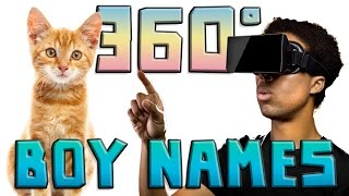 How to Name Your Male Cat (360 Video)