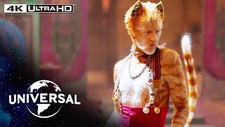 Cats | Skimbleshanks the Railway Cat in 4K HDR