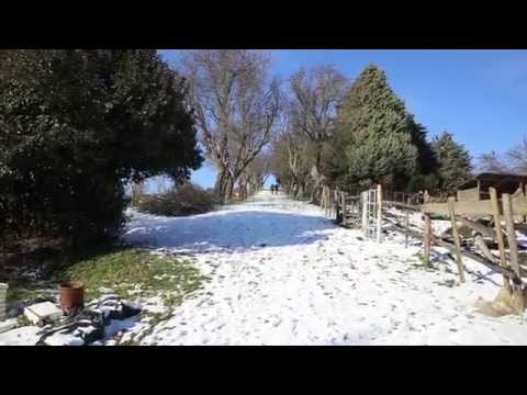 Inverno in Dulcamara