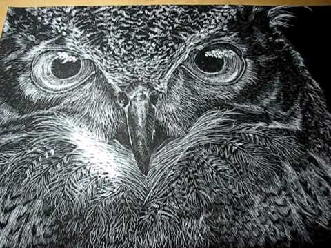 Owl Scratchboard Art Video 2