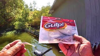 Summer Crappie Fishing Tips - Berkley Gulp Minnow