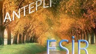 Gambar cover AntePLi_Esir