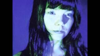 Possibly Maybe (Lucy Mix-LFO)-Bjork (Telegram).wmv