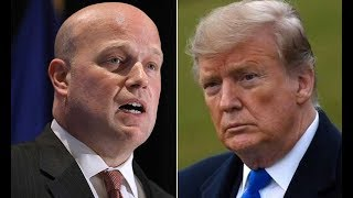 "Whitaker threw Trump under the bus after admitting that he would ""jump on grenades"""