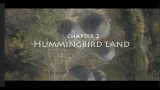 Mamos in Costa Rica - Chapter 2 - Hummingbird Land