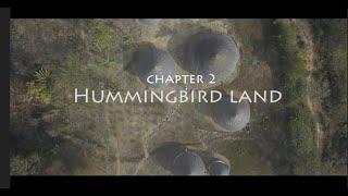 Mamos in Costa Rica - Chapter 2 - Hummingbird Land