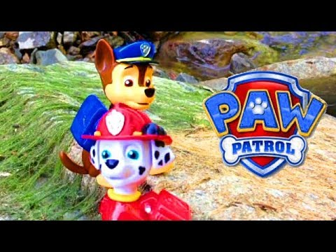 "paw-patrol-🐾-chase-&-marshall-in-""pirate-ship-adventure""-