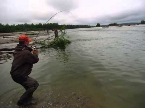 Рыбалка в Магадане 2015    ловля Кеты