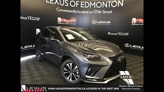 2019 Lexus NX 300 Review