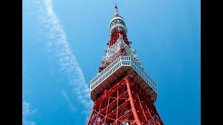 東京タワーライブカメラは、東京タワー塔体の高さ200メートル地点に設置...