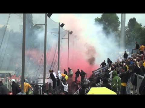 FSV Frankfurt-Dynamo Dresden 1:1 Pyro und Platzsturm
