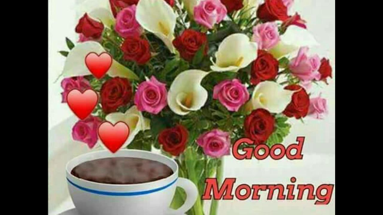 Good Morning My Dear Friends Youtube