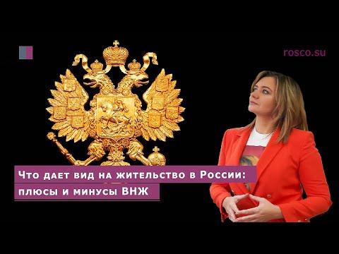 Что дает вид на жительство в России: плюсы и минусы ВНЖ