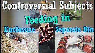 Con-Sub: Feeding in the Enclosure vs Separate Bins