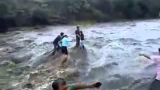 Download Video Peristiwa Memilukan, 4 orang terjebak ditengah sungai dilanda banjir Bandang. 4 orang terseret banjir bandang dan jatuh kesungai yang terjal MP3 3GP MP4