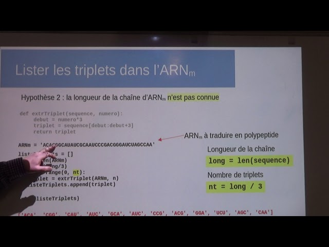 Traduction de l'ARNm en polypeptide. Construction du polypeptide en langage Python [1/3]