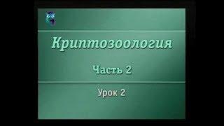 Криптозоология. Урок 2.2. Загадки Зеленого континента