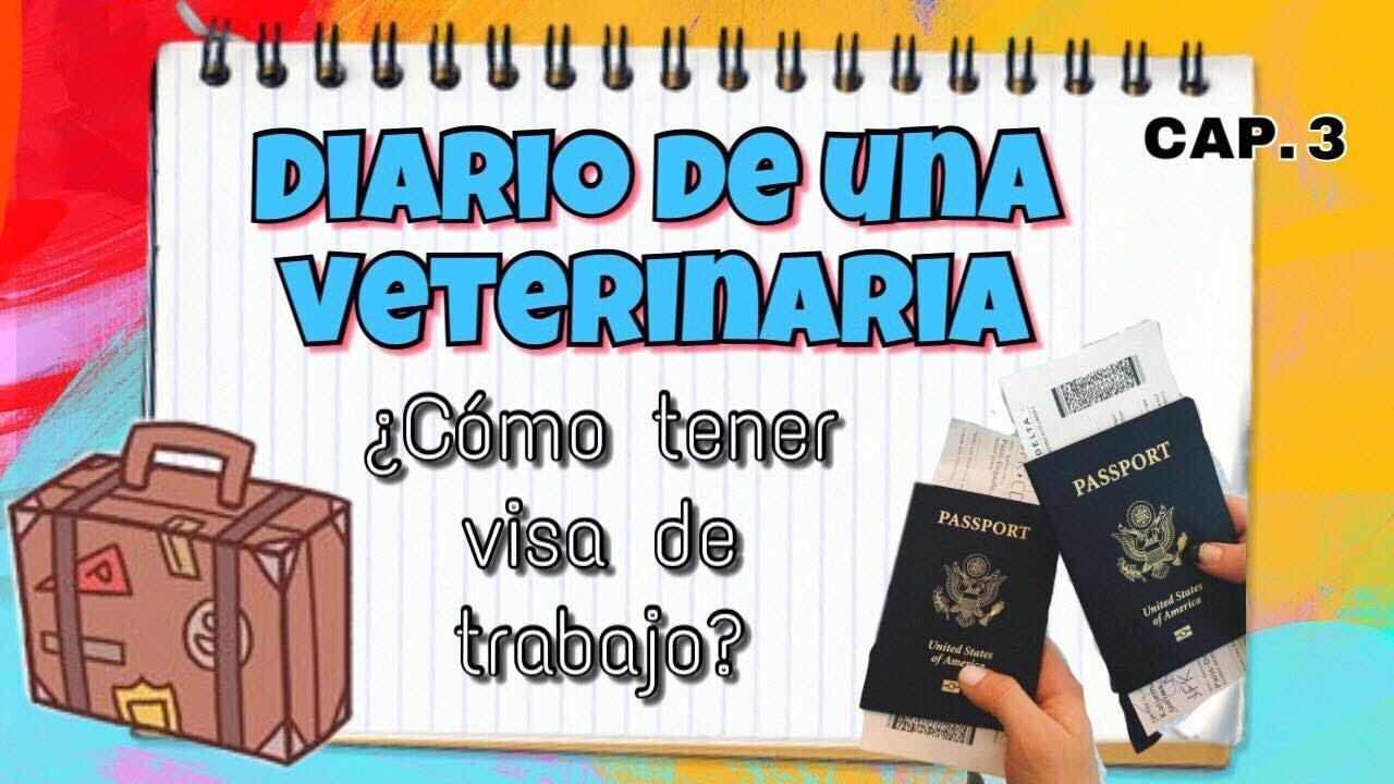 CÓMO TENER VISA DE TRABAJO | SEMANA 3 | DIARIO DE UNA VETERINARIA