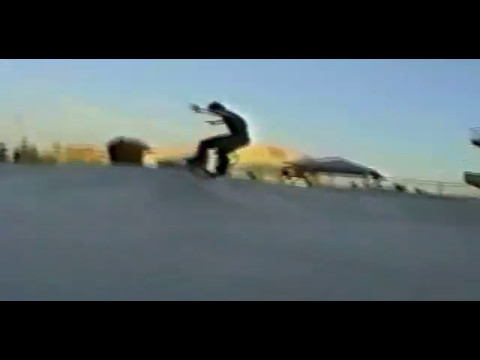 """Consolidated Skateboards  """"Is what it is"""" 1999"""