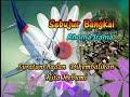 SEBUJUR BANGKAI  - Rhoma Irama -  Wave14000Hz Stereo  MP4