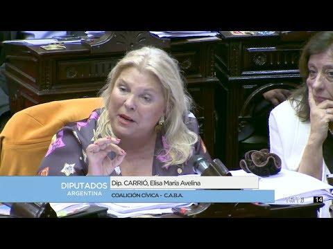 Diputada Carrió Elisa María Avelina - Sesión 26-07-2017