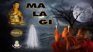 Câu chuyện Phật giáo hay nhất Tuyển tập truyện Ma có thật p2 - Kể truyện đêm khuya Thế giới tâm linh
