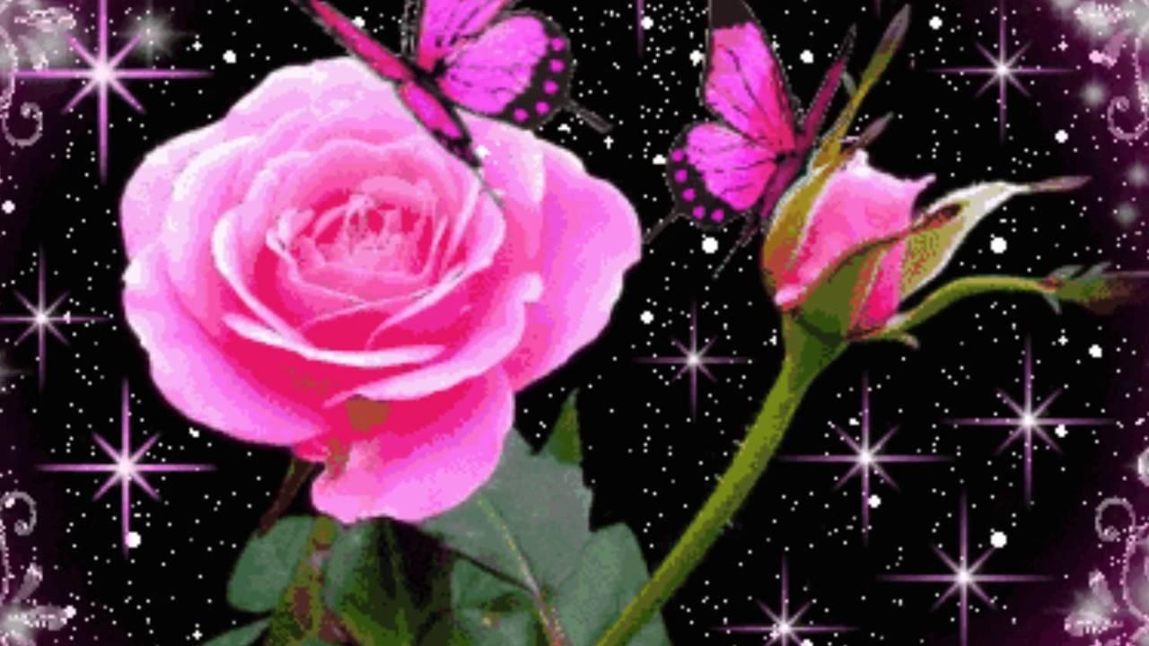 Анимационные цветки фото