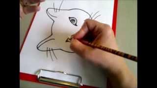 Рисуем кошачью мордочку.  Рисуем кошачьи глаза. Как нарисовать кошку.(Здравствуйте! Предлагаю вашему вниманию видеоролик, где я показываю, как очень просто нарисовать кошачью..., 2015-04-26T09:35:57.000Z)