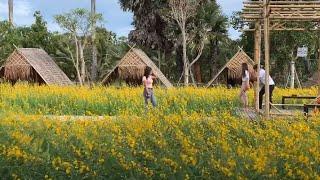 JANWAWA :: KruRote's Garden, Songkhla 洛老师的花园(宋卡府) ครูโรจน์ การ์เดน