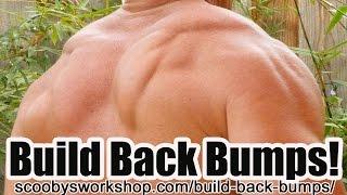 build back bumps with trx shoulder row