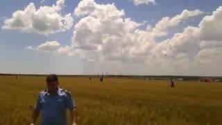 Avion MIG 21 prabusit in Constanta