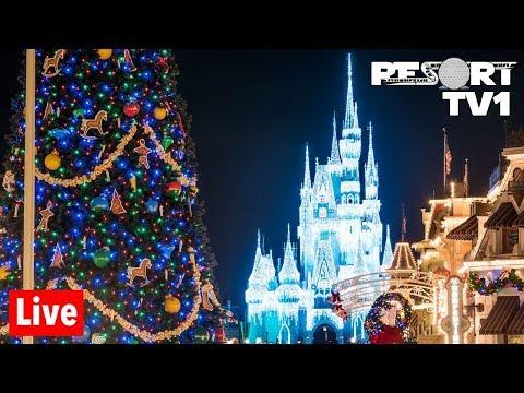 🔴Live: Christmas Is Here At Magic Kingdom! 1080p - Walt Disney World Live Stream - 11-4-19
