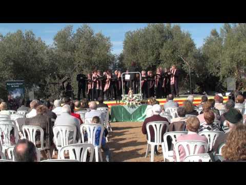 Godall, 20101114 Agrupacio Musical de Godall presentacio Lacrima Olea Mil·lenaria 2