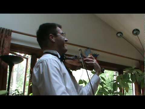 Stanislav Antonevich plays Gerschwin's Summertime