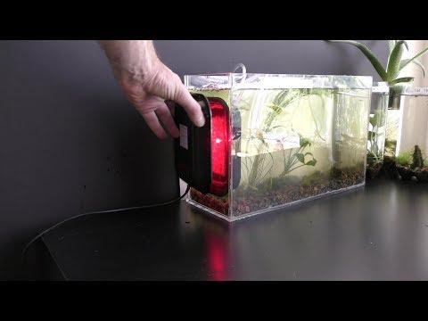 Algae Filter
